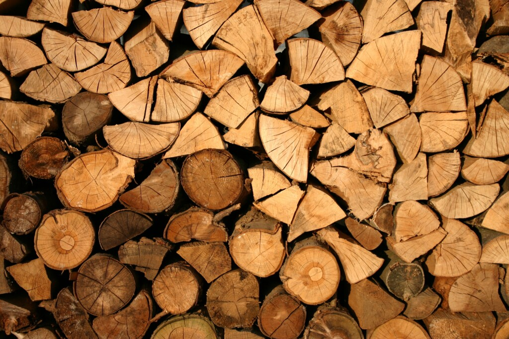 buy a forestry block