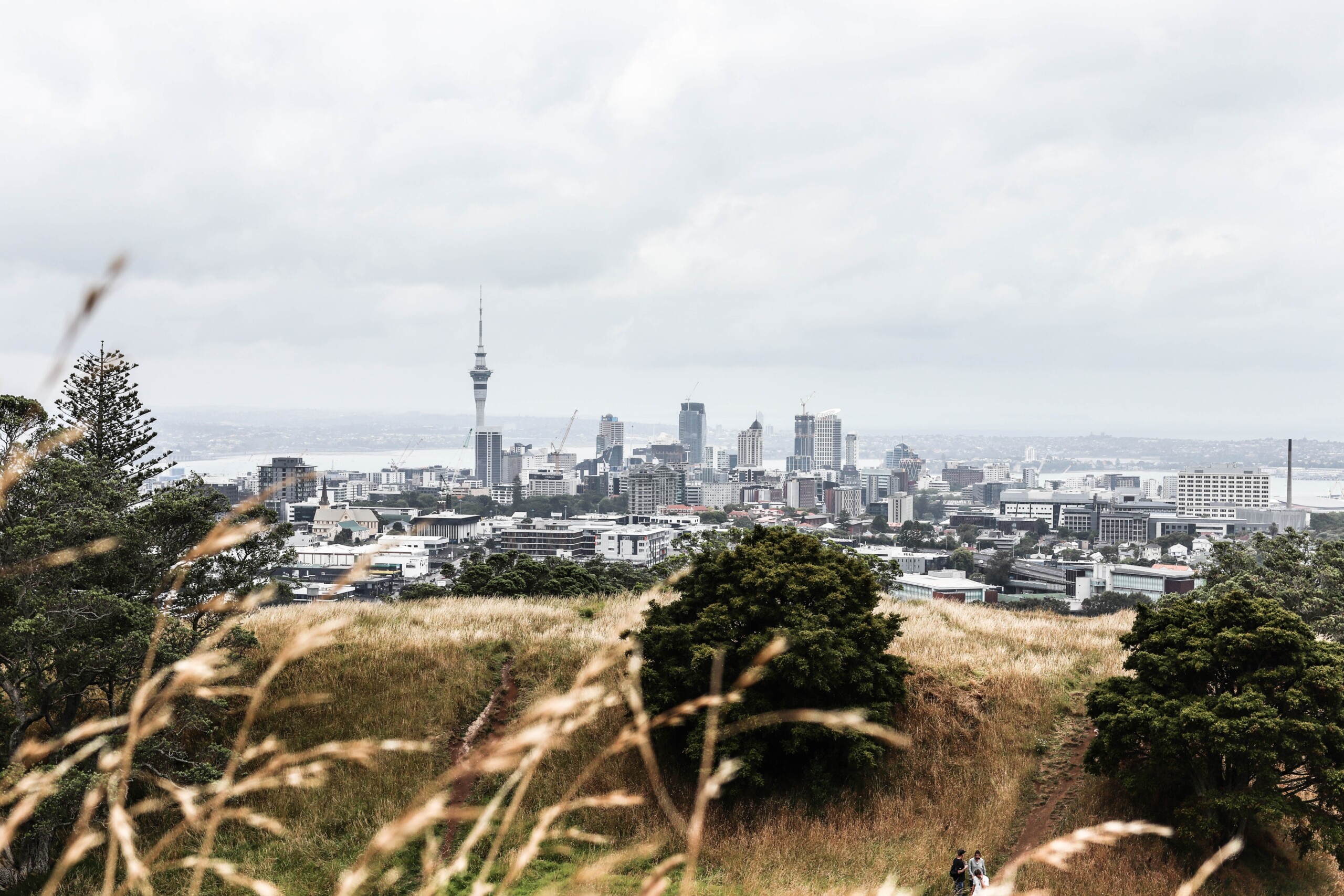 Reasons to leave Auckland #1