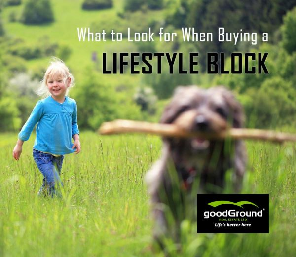 Lifestyle Block Assessment Guide